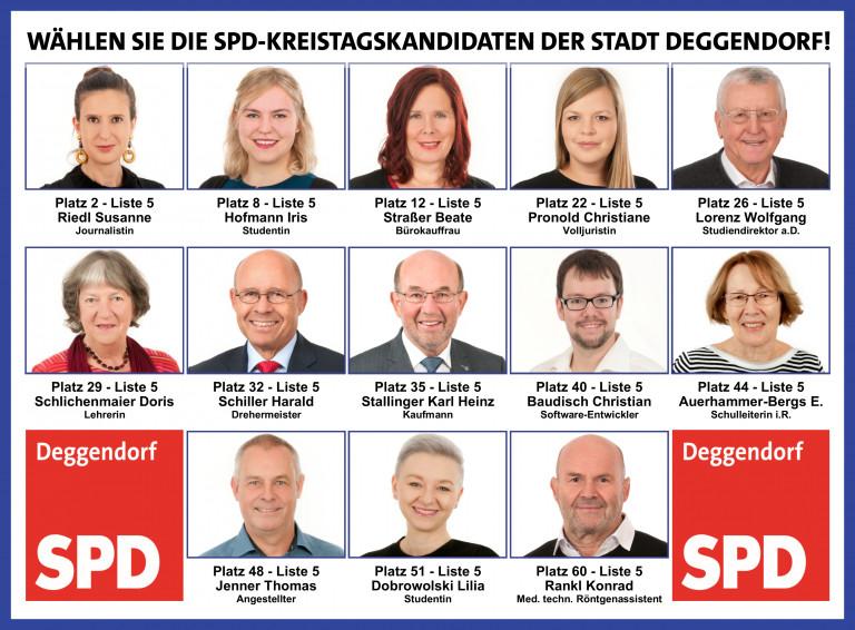 Die Deggendorfer Kreistagskandidaten